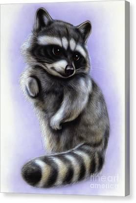 Little Raccoon Canvas Print