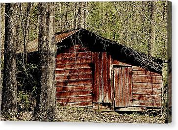 Little Red Shed Canvas Print by Ginger Barritt