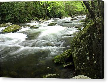 Little River 3 Canvas Print by Marty Koch