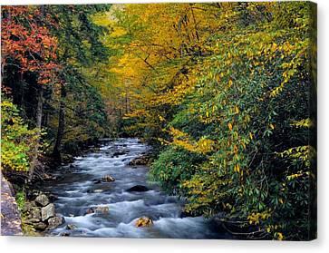 Gatlinburg Tennessee Canvas Print - Little River by Dennis Nelson