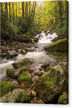 Little River In Autumn Canvas Print by Bob Carr