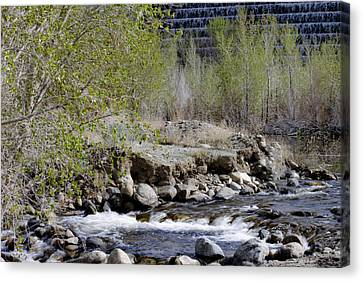 Canvas Print featuring the photograph Little Rock by Ivete Basso Photography