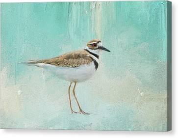 Little Seaside Friend Canvas Print