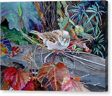 Little Sparrow Canvas Print by Gail Chandler