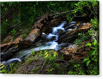 Canvas Print featuring the photograph Little Stream by Gary Smith
