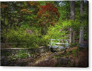 Little Stream Canvas Print by Marvin Spates