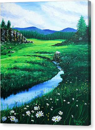 Little Stream Canvas Print by Mike Ivey