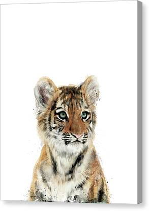 Fauna Canvas Print - Little Tiger by Amy Hamilton