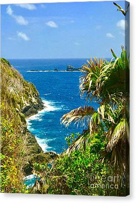 Little Tobago  Canvas Print