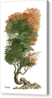 Little Tree 15 Canvas Print by Sean Seal