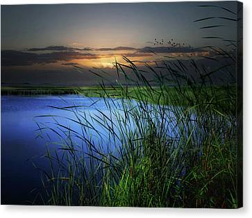 Little Waters Canvas Print