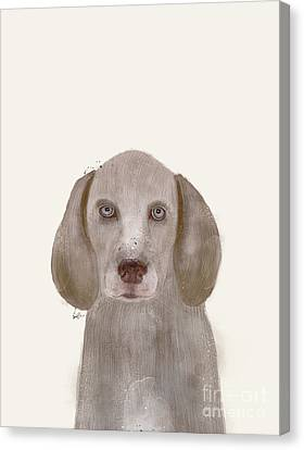 Canvas Print featuring the painting little Weimaraner by Bri B