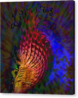 Little Wing Canvas Print by Kevin Caudill