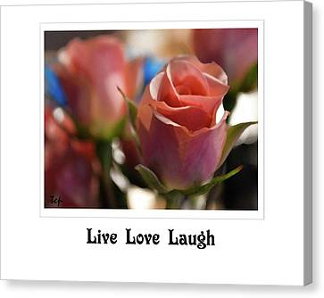 Canvas Print featuring the photograph Live Love Laugh by Traci Cottingham
