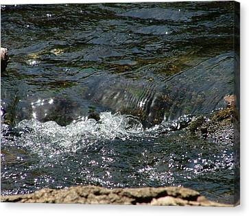Live Water Canvas Print