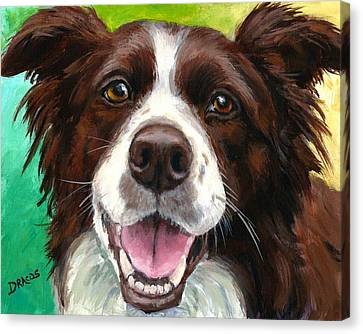 Liver And White Border Collie Canvas Print