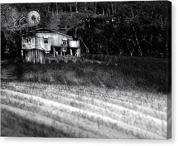Living On The Land Canvas Print by Holly Kempe