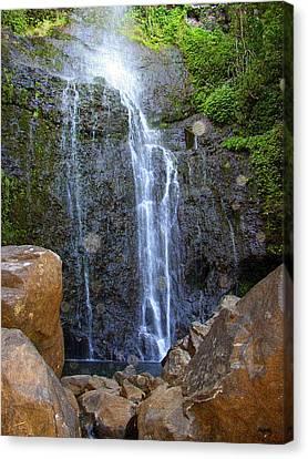 Living Waters - Wailua Falls Maui Canvas Print by Glenn McCarthy Art and Photography