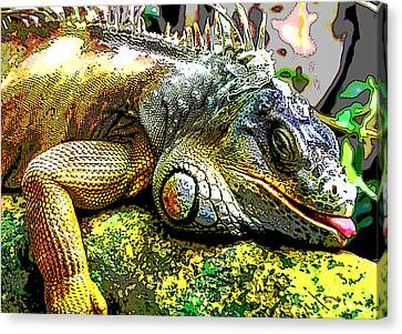 House Pet Canvas Print - Lizard by Charles Shoup