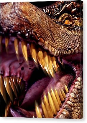 Lizard King Canvas Print by Kelley King