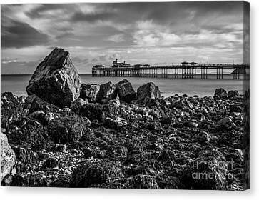 Chris Evans Canvas Print - Llandudno Pier In Monochrome  by Chris Evans