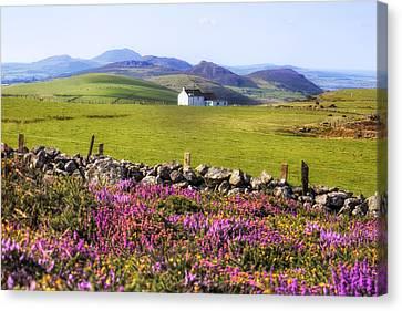 Llyn Peninsula - Wales Canvas Print