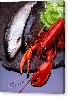 Lobster And Trout Canvas Print by The Irish Image Collection