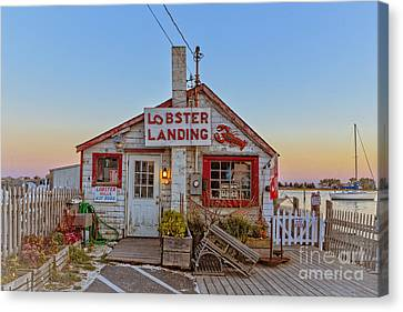 Canvas Print featuring the photograph Lobster Landing Sunset by Edward Fielding