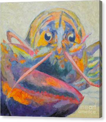 Lobster On The Loose  Canvas Print by Robin Wiesneth
