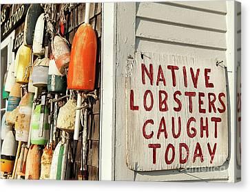 Lobster Shack. Canvas Print by John Greim