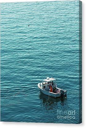 Lobsterman In Maine Canvas Print by Diane Diederich
