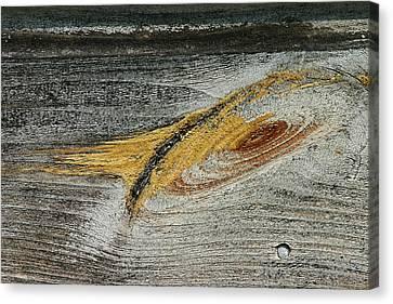 Local Galaxy - Canvas Print
