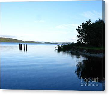 Loch Lomond Canvas Print by Mini Arora