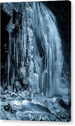 Locked In Ice Canvas Print