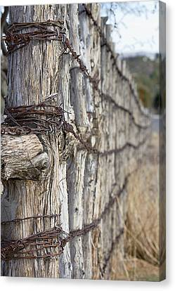Canvas Print featuring the photograph Log And Wire Fence by Phyllis Denton