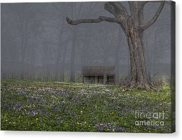 Log Cabin At Mckendree's Chapel Canvas Print by Larry Braun