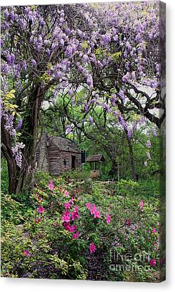 Log Cabin Canvas Print by Gayle Johnson