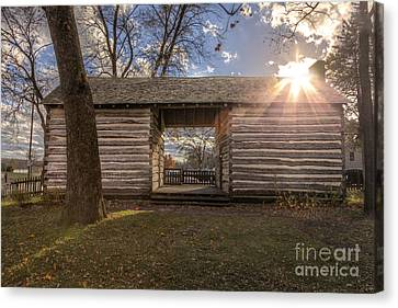 Log Cabin Canvas Print by Larry Braun
