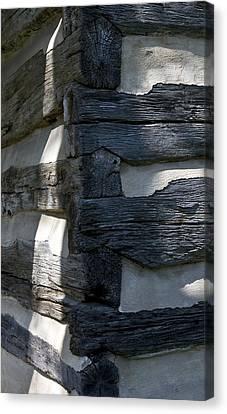 Log Corner Canvas Print by Murray Bloom