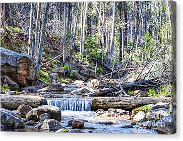 Canvas Print featuring the photograph Log Falls by Anthony Citro