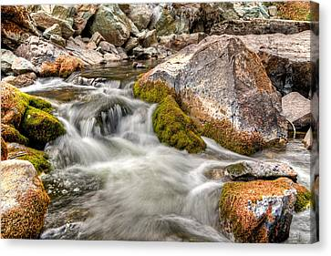 Logan Creek, Montana 2 Canvas Print