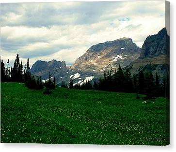 Logan's Pass Canvas Print