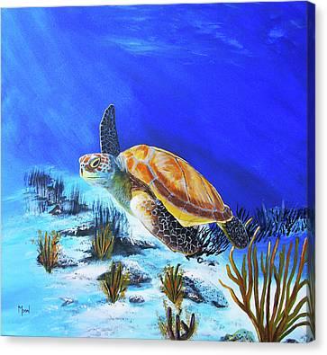 Loggerhead Sea Turtle Canvas Print by John Moon