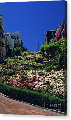Lombard Street  Canvas Print