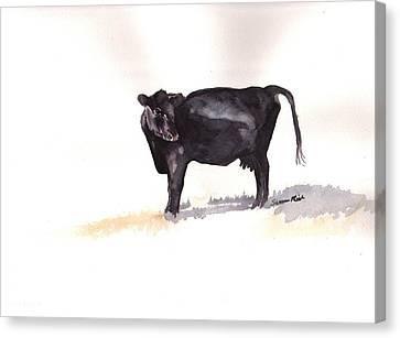 Lone Black Angus Canvas Print by Sharon Mick