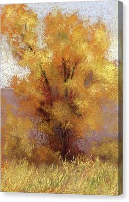 Lone Cottonwood Canvas Print