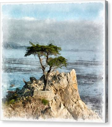 Lone Cypress Watercolor Canvas Print by Edward Fielding