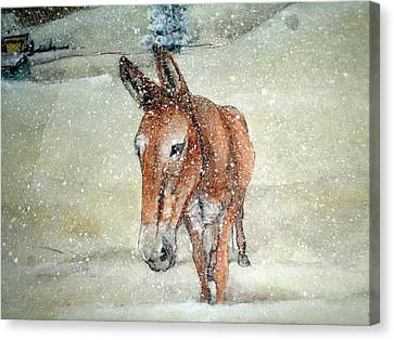 Canvas Print featuring the painting Lone Mule by Debbi Saccomanno Chan