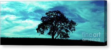 Canvas Print featuring the photograph Lone Oak by Jim and Emily Bush