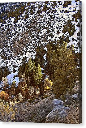Lone Pine Creek Sunset Canvas Print